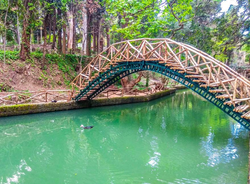 wooden bridge at rodini park