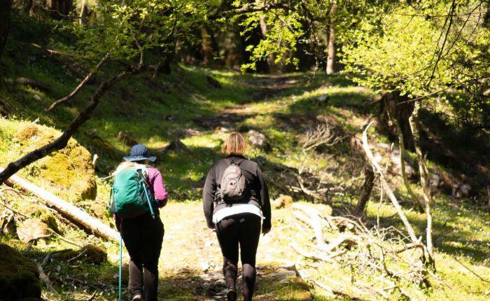 rhodes hiking tours